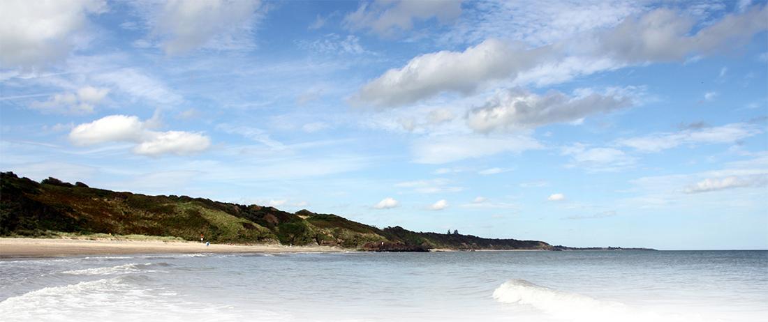 about-gorey-m11-business-campus-beach